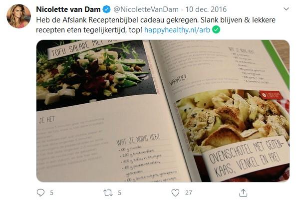 afslank receptenbijbel ervaringen nicolette van dam
